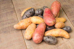 Colorful potatoes on table Stock Photos