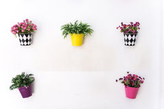 Colorful pots hanging on the walls Royalty Free Stock Images