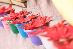 Colorful pots with red leaves royalty free stock images