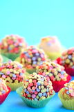 Colorful pralines Royalty Free Stock Image
