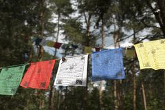 Colorful prayer flags of Buddhist philosophy. Colorful prayer flags lungta/darcho of Buddhist philosophy on the forest background. Soft focus with bokeh stock photos