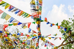 Colorful prayer flags Stock Images