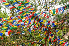Colorful prayer flags Royalty Free Stock Photos