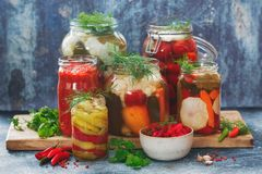 Colorful preserved and marinated seasonal vegetables with herbs. On rustic wooden kitchen table royalty free stock photos