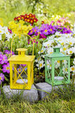 Colorful primula flowers and lanterns in spring garden Stock Images
