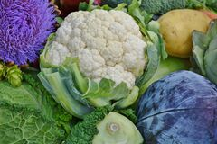 Colorful produce Royalty Free Stock Photography
