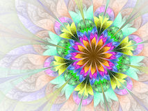 Colorful and psychedelic flower Stock Photo