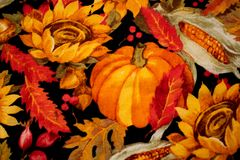 Colorful Pumpkin Thanksgiving Background with Flowers and Corn royalty free stock image