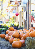 Colorful pumpkins on hay bales Stock Image