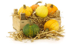 Colorful pumpkins and straw Stock Photos