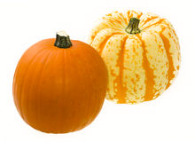 Colorful Pumpkins on White Background Stock Photos
