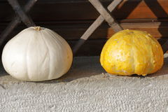 Colorful pumpkins. On a window sill Royalty Free Stock Photo