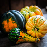 Colorful pumpkins on wooden background Stock Image
