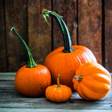 Colorful pumpkins on wooden background Stock Photography