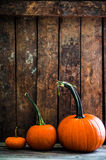 Colorful pumpkins on wooden background Stock Images