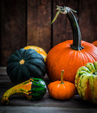 Colorful pumpkins on wooden background Stock Photos