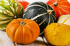 Colorful pumpkins on  wooden background Royalty Free Stock Image