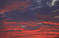 Colorful purple sunset Stock Photography