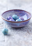 Colorful Quail Eggs in a Ceramic Bowl Stock Image
