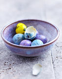 Colorful Quail Eggs in a Ceramic Bowl Stock Photos