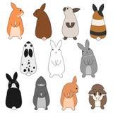 Colorful rabbits set Stock Photos