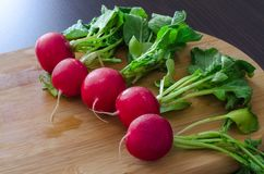 Colorful radishes with green leaves. In one row on right side, on light wooden background Royalty Free Stock Photo