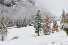 Colorful rail car. Snowy trees and colorful rail car Dolomites Italy Stock Images