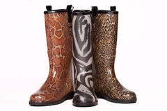 Colorful rain boots Royalty Free Stock Photo