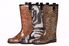Colorful rain boots Royalty Free Stock Image