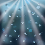 Rain drops and sun rays Royalty Free Stock Photo