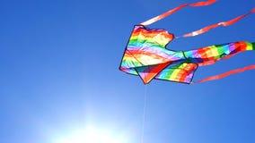 Colorful rainbow kite flying Royalty Free Stock Photo