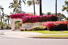 Colorful real estate of  maui island Stock Photography