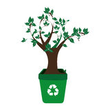 Colorful recycling container with leafy tree plant Royalty Free Stock Images