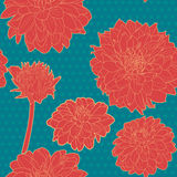 Colorful red aster seamless floral pattern with  blue dots Stock Images
