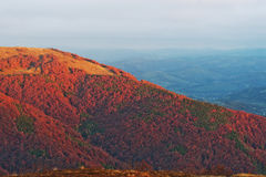 Colorful red autumn landscape in the mountain. Foggy morning mou Stock Photo