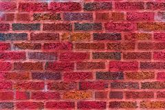 Colorful Red Brick Wall Backround stock photo