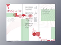 Colorful red circle and green background brochure design templat Royalty Free Stock Image
