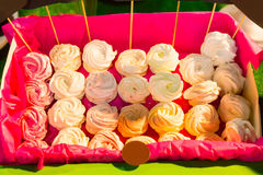 Colorful red container of party meringues Stock Images