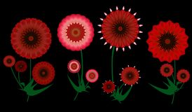 Colorful  red digital art  summer flowers on black Royalty Free Stock Photography