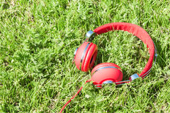 Colorful red headphones on sunlight glade Royalty Free Stock Images