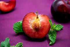 Colorful red plum with mint on purple background Royalty Free Stock Photos