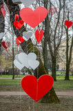 Colorful red and white hearts, hanging from a rope on a tree in a park symbolizing happiness and love in Lviv, Ukraine Royalty Free Stock Photography