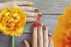 Colorful red Yellow orange manicure with a design. Of tulips sliders on a female hand royalty free stock images