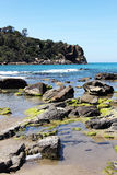 Colorful reef in a sunny day, cefalu, seascape Royalty Free Stock Photography