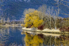 Colorful reflections on river. Royalty Free Stock Photography