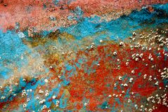 Colorful remains of boat Stock Image