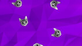 Colorful retro falling kitten cats animation on a blue geometric background with a analogue interference and grain texture overlay