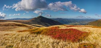 Colorful ridge. View on a colorful righe in Carpathians in autumn Stock Photo