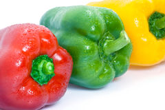 Colorful ripe bell peppers Stock Image