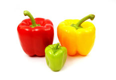 Colorful ripe bell peppers. Colorful red, yellow and green bell peppers isolated on white background Royalty Free Stock Images